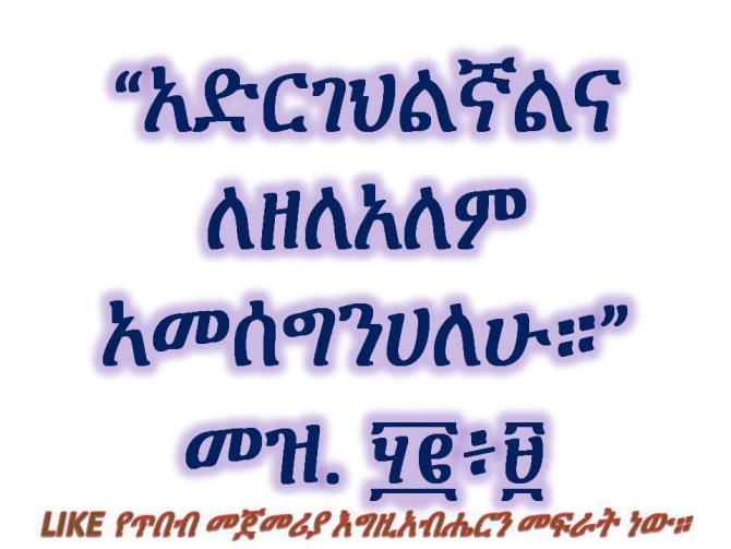 Hosy Senay